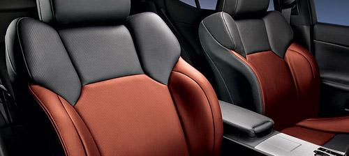 Lexus IS-F Terra Cotta Interior