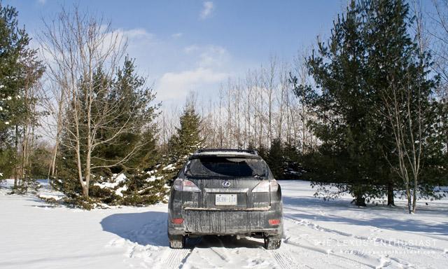 Lexus RX450h Rear