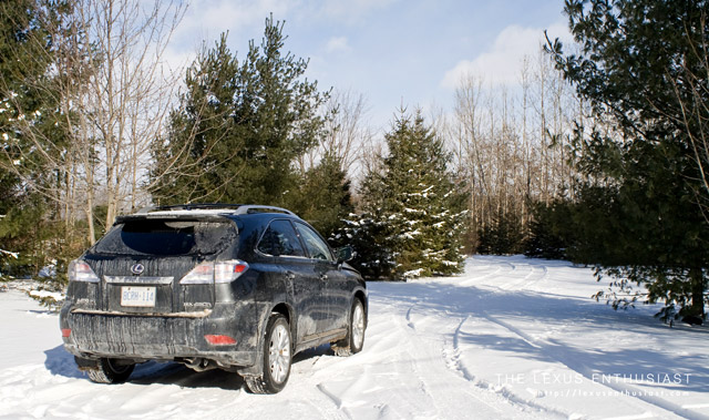 Lexus RX 450h in Salt