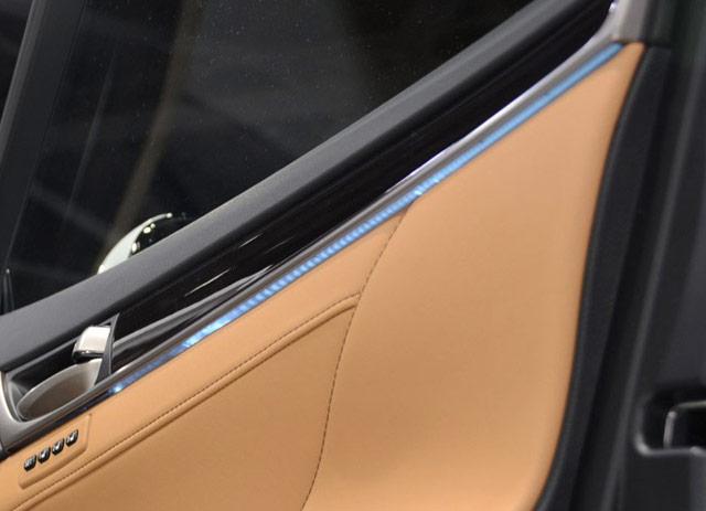 Lexus GS LED Strip in Door Zoomed up
