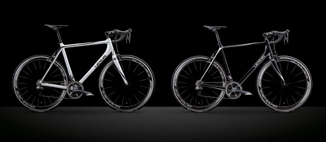 Lexus F SPORT Bicycle