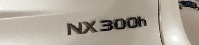 Lexus NX Nameplate