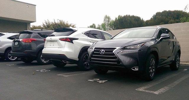 Lexus NX Wild