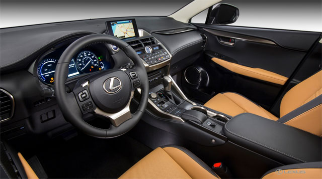 Lexus NX Metal Surround