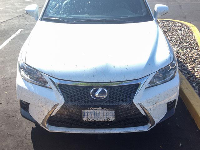 Lexus CT Bugs