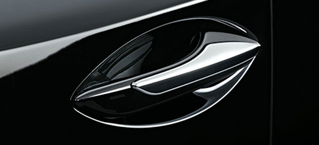 Lexus NX Door Chrome