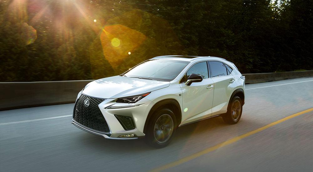 Lexus NX Sales Result