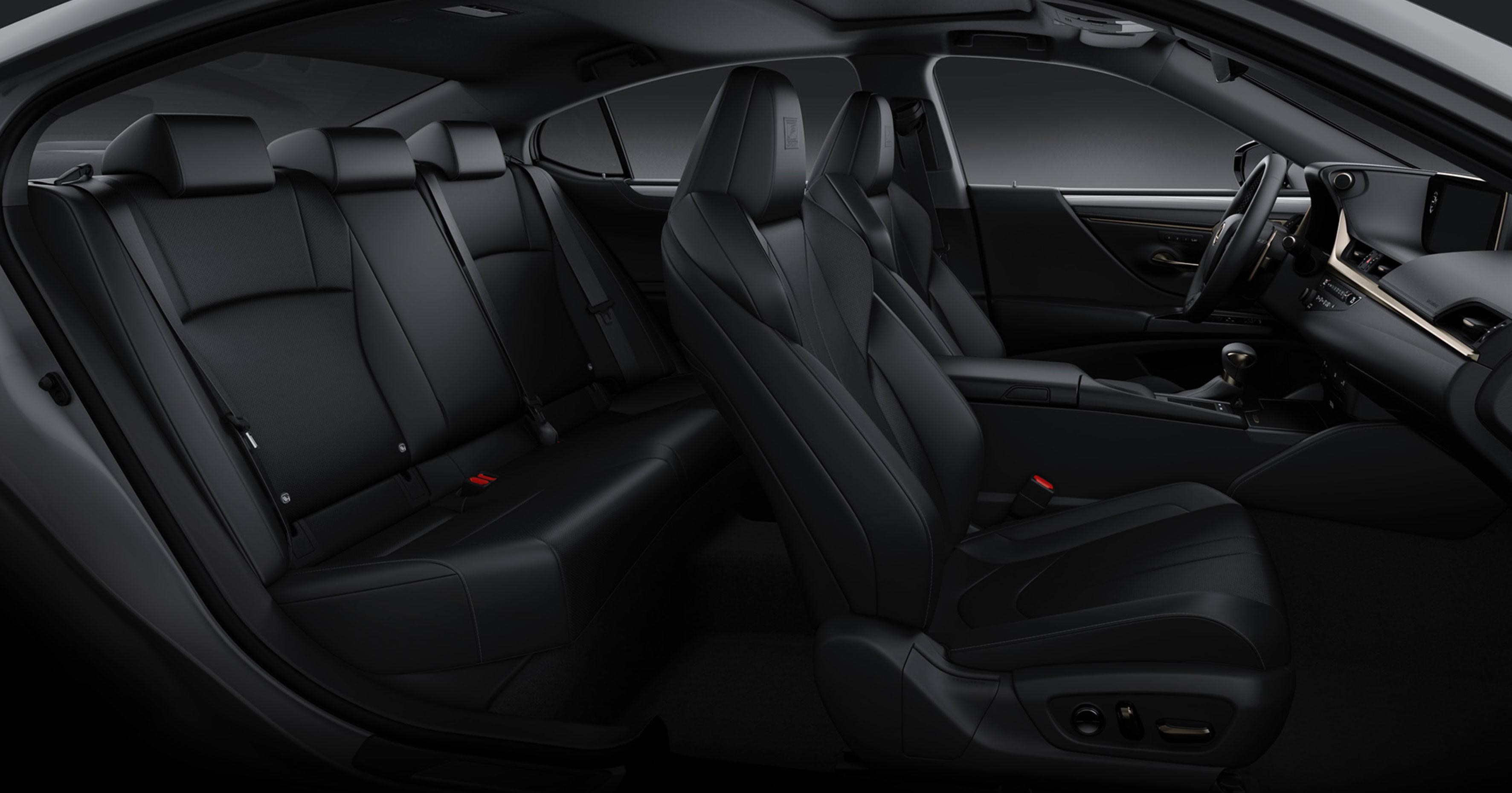 Lexus ES F SPORT Black NuLuxe