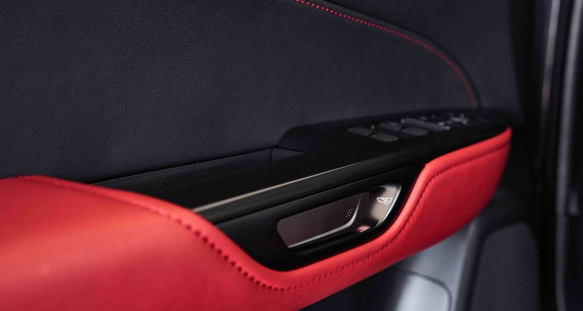 Lexus NX Door Handle