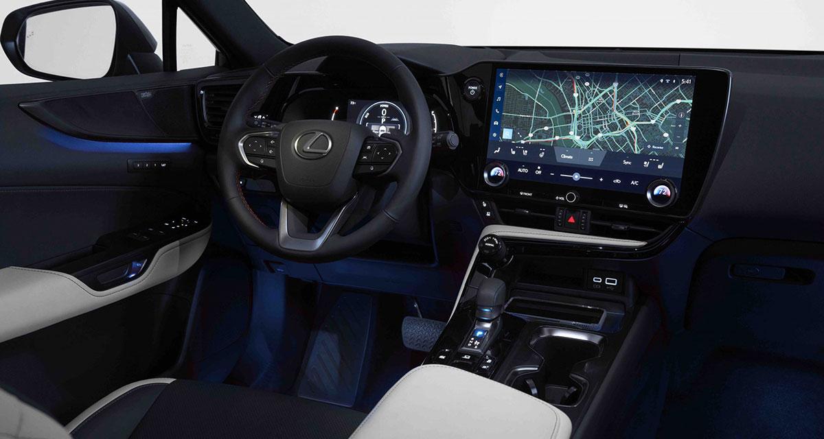 Lexus NX Interior Blue White