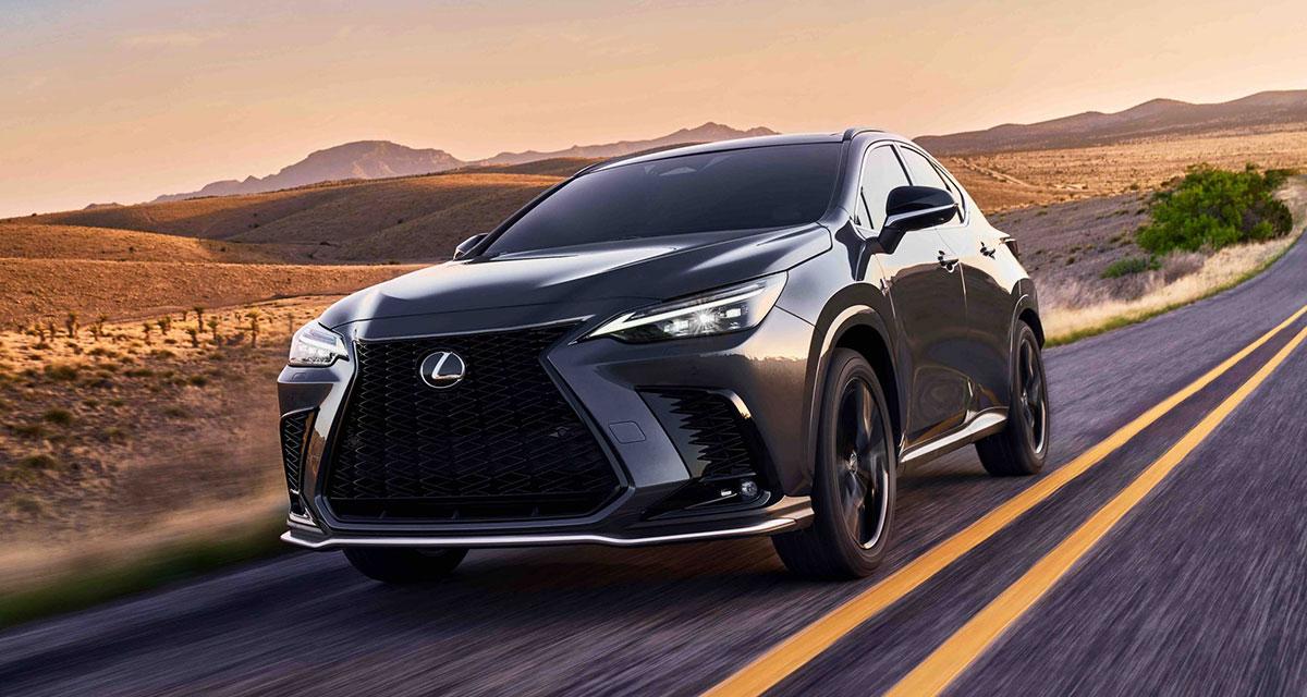Lexus NX Videos 2022