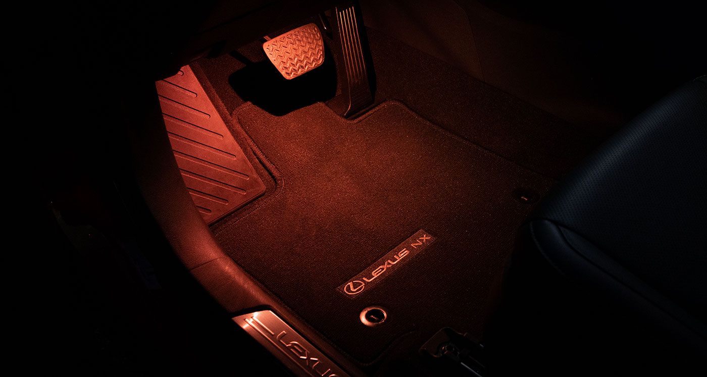 Lexus NX Illumination